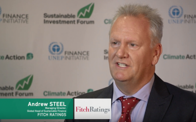 Interview with Andrew Steel, Fitch Ratings, SINV NA