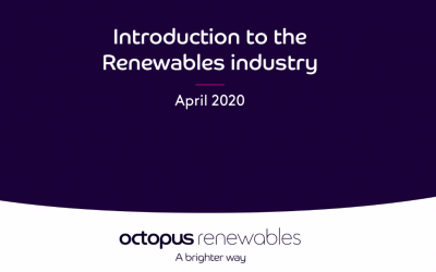 An introduction to the renewable energy sector