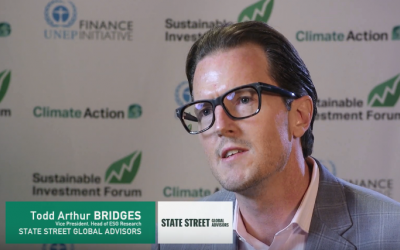 Interview with Todd Arthur Brigdes, State Street Global Advisors, SINV NA