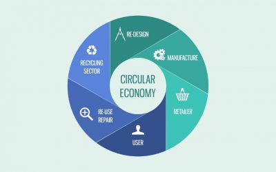 The Growing Trend of Circular Economy
