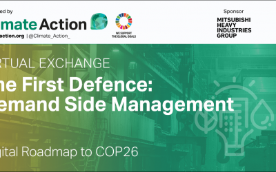 The First Defence - Curbing your organisations energy use through demand side management