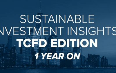 Putting TCFD to work: One year on