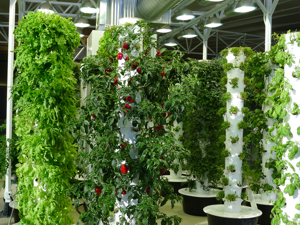 Europe S First Commercial Vertical Farm Begins