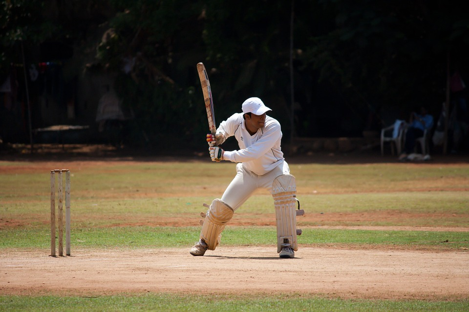 my hobby cricket Buy a thesis short essay on my hobby cricket law school personal statement editing service help in thesis.