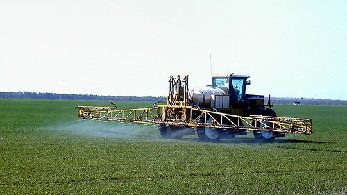Europe's nitrogen footprint causes concern